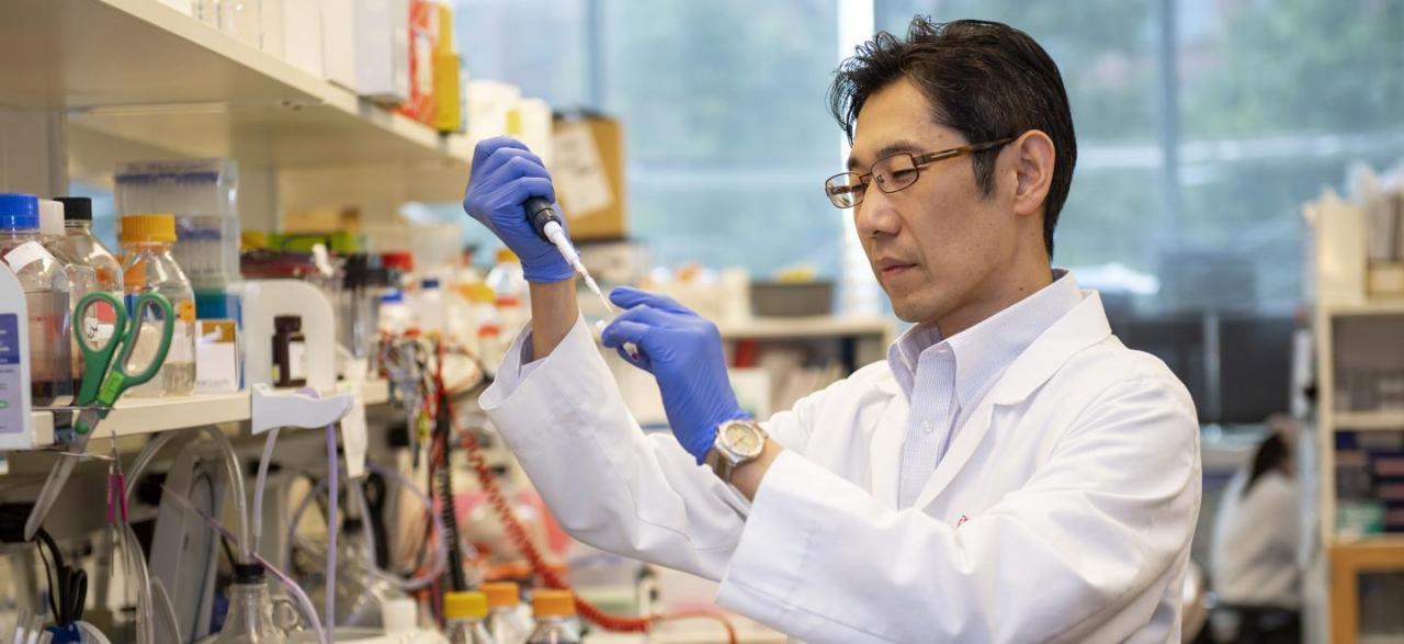 """抓住癌症风暴的""""眼睛"""",Nature子刊解开癌细胞的摄食之谜"""